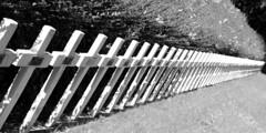 Enclos National des Fusillés (Liège 2019) (LiveFromLiege) Tags: liège luik wallonie belgique architecture liege lüttich liegi lieja belgium europe city visitezliège visitliege urban belgien belgie belgio リエージュ льеж enclos national des fusillés citadelle de résistance verzet wwi 2gm ww2 black white bnw bw blackandwhite blackwhite whiteandblack whiteblack 50mm noir et blanc noiretblanc noirblanc blancnoir wb nb noietblanc bllackwhite blackandwhitephotography