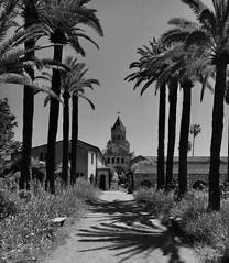 Hostie & Riviera. (Pierre-Louis K.) Tags: abbaye église palmier chemin plante noiretblanc blackandwhite ombre sud france calme solitude