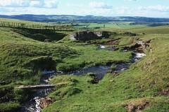 LLC1-15 Bend in Stream, Dowhill Muir, above Cleish, Perth & Kinross (timonrose1) Tags: dowhillmuir cleish perthkinross kinross stream