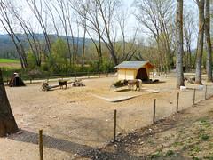 Donkies (Going to the Zoo with Trebaruna) Tags: leowildpark collevalenzazoo collevalenzafattoriadidattica zoo enclosures enclosure italy italia 2019 02042019