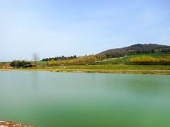 Main pond (Going to the Zoo with Trebaruna) Tags: leowildpark collevalenzafattoriadidattica zoo enclosures enclosure italy italia 2019 02042019