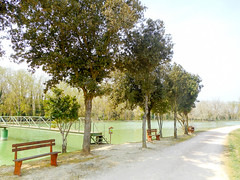 Main pond (Going to the Zoo with Trebaruna) Tags: leowildpark collevalenzazoo collevalenzafattoriadidattica zoo enclosures enclosure italy italia 2019 02042019