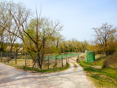 Donkey, cow, buffalo, yak (Going to the Zoo with Trebaruna) Tags: leowildpark collevalenzazoo collevalenzafattoriadidattica zoo enclosures enclosure italy italia 2019 02042019