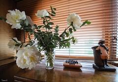 Pivoine MS Elisabeth - 6898 (✵ΨᗩSᗰIᘉᗴ HᗴᘉS✵62 000 000 THXS) Tags: pivoine flora flower péniche mselisabeth statue jeu game belgium europa aaa namuroise look photo friends be yasminehens interest eu fr party greatphotographers lanamuroise flickering canon canonrp