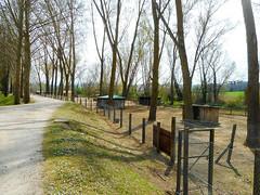 Goats & domestic animals (Going to the Zoo with Trebaruna) Tags: leowildpark collevalenzazoo collevalenzafattoriadidattica zoo enclosures enclosure italy italia 2019 02042019