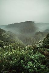 L2026254.jpg (petersaputra) Tags: super elmar 18mm f38 leica m9 m9p landscape tebing keraton