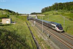 6830 Metz-Marseille (Marc_135) Tags: tgv tgvréseau 6830 marseille metz laire lgv lgvrhinrhone réseau511 tgveuroduplex vert bleu train rail