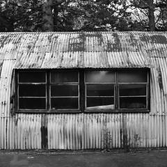 Nissen hut (a.pierre4840) Tags: olympus omd em10 micro43 cmount schneider kreuznach xenon 25mm f095 bw blackandwhite noiretblanc architecture 11 squareformat derelict abandoned decay dorset england