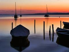 Romantisches (flori schilcher) Tags: schilcher ammersee diesen bayern sunrise sonnenaufgang aurora see wasser boot morgenrot