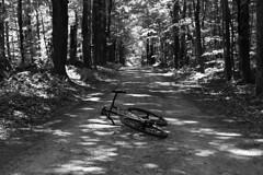 Path ahead (44 Bikes) Tags: 44bikes custombicycle huntsman framebuilding titanium prototype