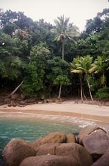 Praia do Português (Henrique F. da Silva) Tags: olympusaccura 35mm colorplus200 kodakfilm kodak olympuszoom105 olympusaccura105 pointandshoot ubatuba beach seaside