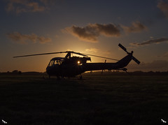 Westland Scout Helicopter xw613 (colin ryan photography) Tags: olympus olympusem1mk11 olympus12100pro olympus40150pro plane military militaryplane leeonsolent solentairport daedalus hmsdeadalus timelineevents sunset westland scout sun ww2 ww11 dday 75th celebrations