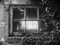 Abandoned lab (a.pierre4840) Tags: olympus omd em10 micro43 cmount schneider kreuznach xenon 25mm f095 bw blackandwhite noiretblanc window decay abandoned derelict ruined dorset england atmospheric