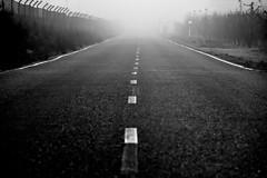 Foggy road (jaume zamorano) Tags: blackandwhite blancoynegro blackwhite blackandwhitephotography blackandwhitephoto bw boira brouillard catalunya d5500 dof fog foggy ground lleida lines monochrome monocromo mist nikon noiretblanc nikonistas niebla pov road street streetphotography streetphoto streetphotoblackandwhite streetphotograph