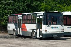 GVP-953 - Ikarus C56 (Eurobus Online) Tags: knykk enying hungary ikarus