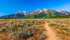 Path To The Teton Mountains, Grand Teton National Park (rebeccalatsonphotography) Tags: path trail mountains grandteton nationalpark summer july canon rebeccalatsonphotography wy wyoming 5dsr 1635mm wideangle leadingline