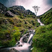 Borrowdale - Lake District, England - Landscape photography