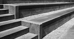 Linien (Helmut44) Tags: deutschland sachsenanhalt magdeburg linien treppe treppenaufgang sw petriförder