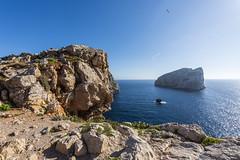 it feels like flying (*magma*) Tags: sardegna capocaccia alghero paesaggio landscape mare sea gabbiano seagull rocce rocks