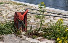 Schiffsanlegestelle (Helmut44) Tags: deutschland sachsenanhalt magdeburg anlegestelle schiffsanlegestelle petriförder seil elbe wasser
