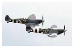 Grace Spitfire and MH434 in formation. (Ciaranchef's photography.) Tags: spitfire supermarine formationflying iwmduxford duxford warbirds nikond7000 tamron150600