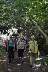 Shady woods (Chrispics Photography) Tags: farnham walking festival