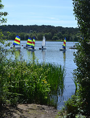 Beside the sailors (Chrispics Photography) Tags: farnham walking festival