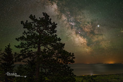 Highlands Pine Starlight (Images by Beaulin) Tags: tofte landscape milkyway astrophotography stars northshore starrynight obergmountainoverlook nightsky superiornationalforest nightscape foregroundexposure starscape starrysky skyscape starphotography cookcounty lakesuperior minnesota