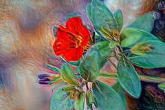 Flower Abstraction (Carol (vanhookc)) Tags: deepdreamgenerator digitalart digitalprocessing digitalediting painterly ddg