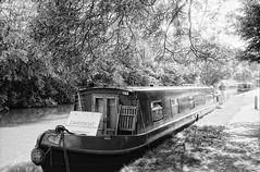 Ricoh 500RF - Fomapan 100 (5) (meniscuslens) Tags: barge canal bedfordshire leighton buzzard tree shadow towpath vintage film camera ricoh 500rf fomapan