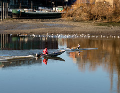 Anyone for a race (Russtafa) Tags: boats river thames speedboat rower rowing