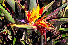 Bird of Paradise (Carol (vanhookc)) Tags: deepdreamgenerator digitalart digitalprocessing digitalediting painterly ddg sliderssunday hss
