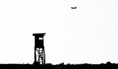 R_DSC_5954 (ViharVonal) Tags: vie loww airplane wien photography photo plane austria nikon tamron