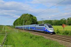 Duplex champêtre (Lion de Belfort) Tags: train chemin de fer sncf tgv duplex 800 806 atlantique alsace montreuxvieux lutran valdieu girouette champ 2n 2n2 ligne 4 l4