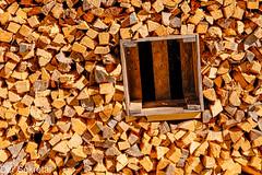 Holz —- Wood (der Sekretär) Tags: brennholz brett detail feuerholz holz holzkiste holzscheit holzscheite kasten kiste latte latten scheite board box case closeup crate firewood log logs monochrom piecefirewood slat slats wood woodenbox