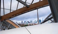 Fondation Louis Vuitton (Maxime Guéry) Tags: architecte frank gehry fondation louis vuitton paris musée art contemporain et moderne architecture architettura architektur arquitectura architectes abstract abstrakt