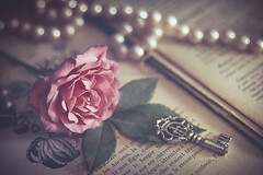 Les Anciens (Ro Cafe) Tags: stilllife necklace pearls flower rose pink key oldbook romantic vintage moody textured helios58mmf2 nikond600