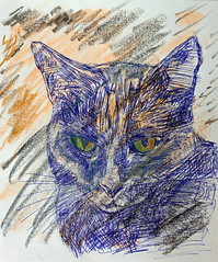 Sketch portrait of Loa cat (House Of Secrets Incorporated) Tags: loa cat blackcat havanabrown cats pets animal animals siamese sketchoftheday sketch drawing drawingoftheday marumancroquis croquis maruman sketchbook art fabercastellgelatos biro ballpointpen pen blog blogger blogging kittensandsteamblogspotcom instagramkittensandsteam twitterhildebcm belgianblogger instagramcomkittensandsteam
