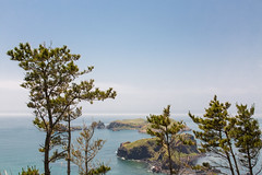 Islands (GlobalGoebel) Tags: jeju island jejudo korea southkorea south trees canonef24105mmf4lisusm 24105mm canoneos5dmarkiii yongsuri yongsu olle trail coast coastal islands hike walk circuit travel