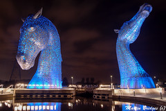 Kelpies at Night (Martin Bridges Photography) Tags: scotland kelpies night longexposure reflection water outside falkirk forthandclydecanal architecture lighteffects nikon nikkor nightphotography