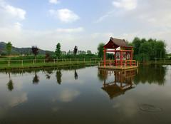 La pagoda (Darea62) Tags: reflections water outside pagoda pond temple buddha religion countryside stagno marumi quiesa massarosa versilia tuscany