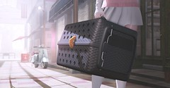 -MUSU- Cat Carrier @Equal10! (MistahMoose) Tags: avoixs ca cat kitten carrier secondlife equal10