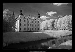 Schloss Ahrensburg, Schleswig Holstein (Dierk Topp) Tags: 850nm a7r auhrensburg bw bäume ilce7r ir sony1635mmvariotessartfef4zaoss sonya7rir architecture infrared monochrom sw schloss sony trees