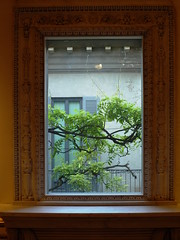 Window painting. (in_ar23) Tags: milan italy street summer people building pavia modern history milano via estate gente window painting house frame tree garden windowsill pictureframe