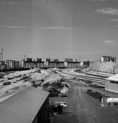 Oulu infrared (Sonofsono) Tags: infrared ir black bw white film finland moskva moskva5 120 sunny landscape