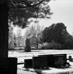 IR photo of winter war and continuation war graveyard (Sonofsono) Tags: infrared film finland grave statue ir filter black bw white moskva moskva5 120