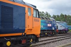 50049, 57307 and 68027 at Crewe Depot (Tom 43299) Tags: train crewe class50 class57 creweopenday locomotiveservices creweheritagesidings tpe gbrailfreight transpennineexpress gbrf 57307 class68 68027 50049