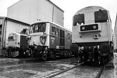 20205, 73001 & 37190 - All Change - Crewe LSL Depot - 08.06.2019 (Tom Watson 70013) Tags: all change crewe lsl locomotive services class20 20205 class73 73001 class37 37190 br blue