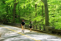 Rock Creek Park | Washington D.C. (Stephenie DeKouadio) Tags: canon photography outdoor rockcreekpark trees park spring washington washingtondc dc dcphotos green colorful beautiful beauty people