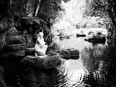 6018 - Venus' baths (Diego Rosato) Tags: bagno venere venus baths pond stagno statua statue parco park giardino garden reggia realm royal palace caserta bianconero blackwhite fuji x30 rawtherapee